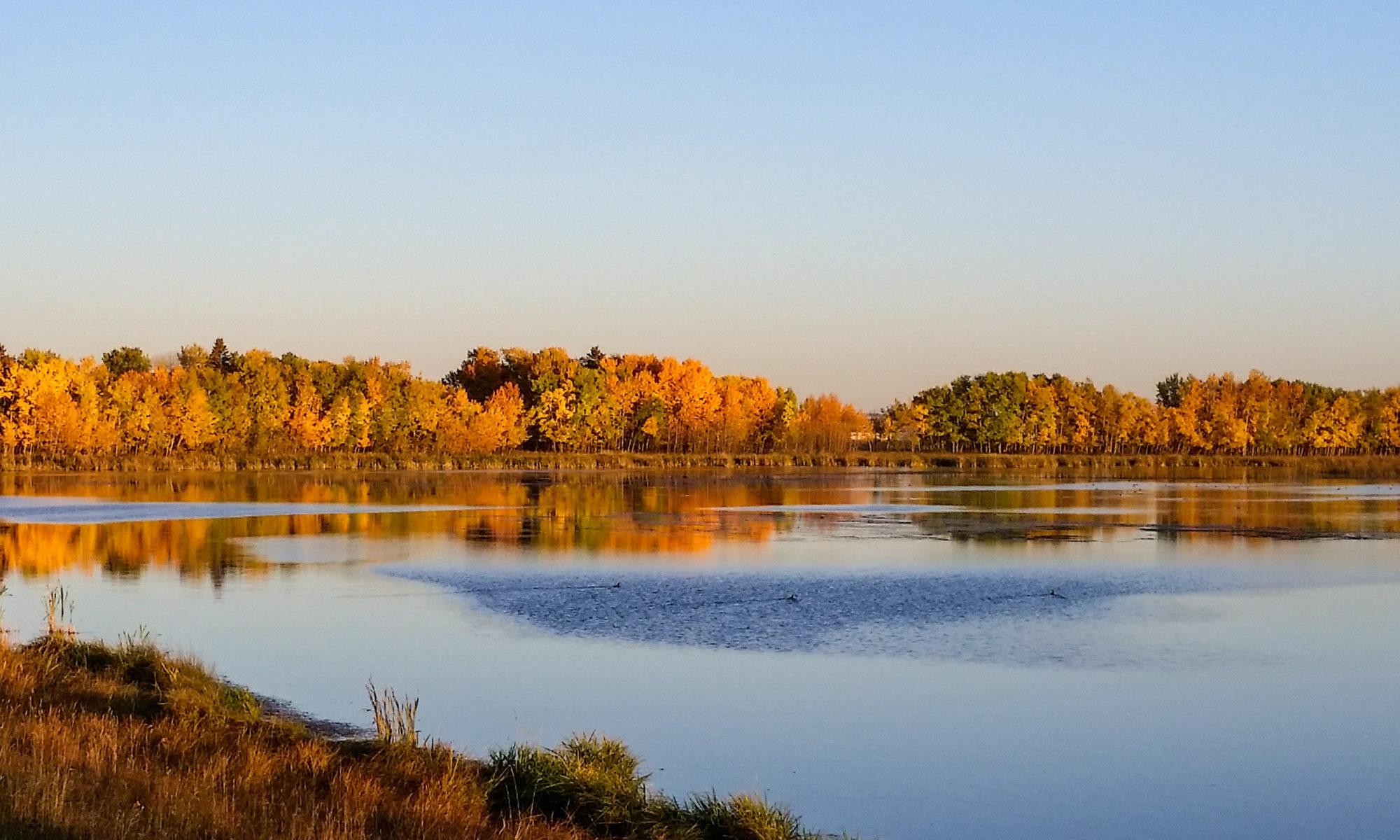Central Alberta REALTORS® Association